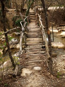 rural bridge from logs through a small river